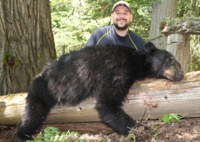 black bear (11)_guided hunting trips in british columbia