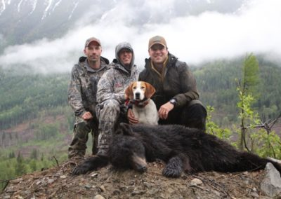 black bear (7)_guided hunting trips in british columbia