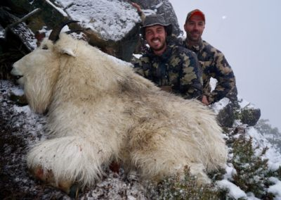 goat_guided hunting trips in british columbia