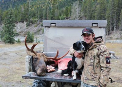 moose3_guided hunting trips in british columbia