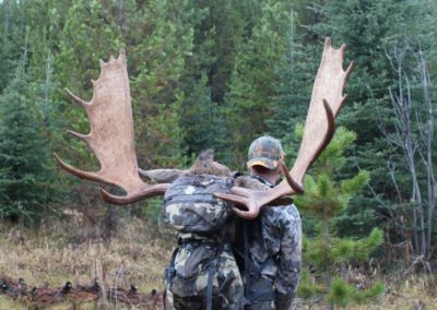 moose4_guided hunting trips in british columbia
