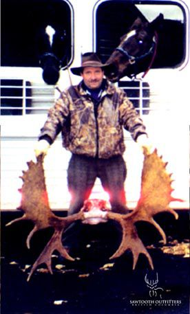 001_moose-guided-hunting-trips-in-british-columbia