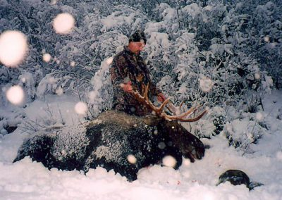 photo_154_moose-guided-hunting-trips-in-british-columbia