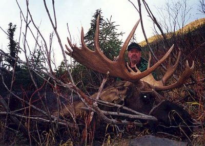 photo_160_moose-guided-hunting-trips-in-british-columbia