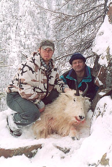 photo_161_goat-guided-hunting-trips-in-british-columbia