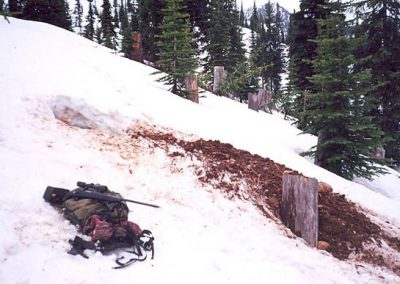 photo_174_grizzly-bear-guided-hunting-trips-in-british-columbia