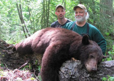 photo_2013_01_black-bear-guided-hunting-trips-in-british-columbia