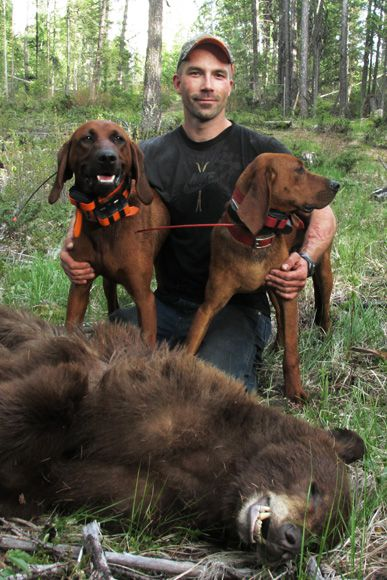 photo_2013_04_black-bear-guided-hunting-trips-in-british-columbia