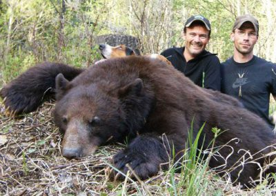 photo_314_black-bear-guided-hunting-trips-in-british-columbia