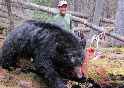 photo_320_black-bear-guided-hunting-trips-in-british-columbia