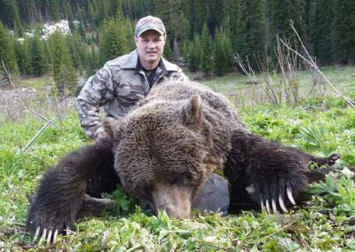 photo_355_grizzly-bear-guided-hunting-trips-in-british-columbia